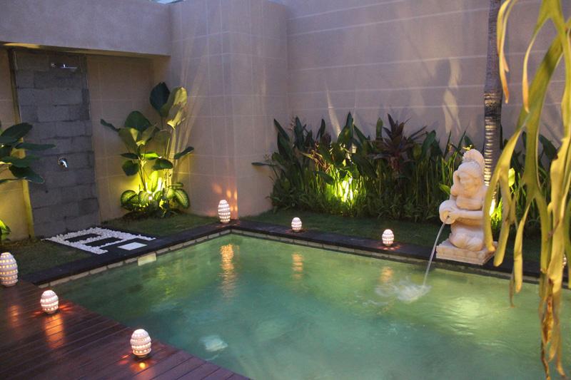 Serene Exotic Pool Ambiance