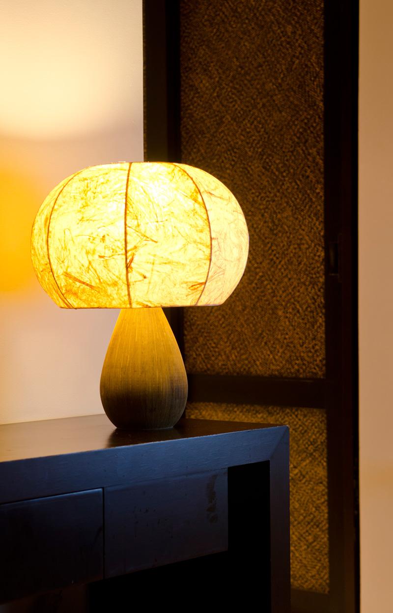 Simply Natural Mushroom Ambient Lighting