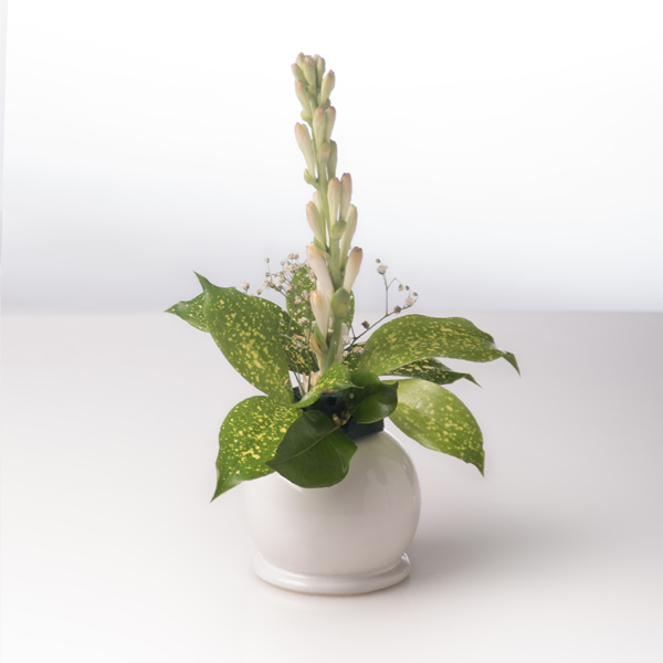 pearl vase small white,living room decoration
