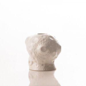 cactus-Vase